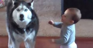 talkative baby