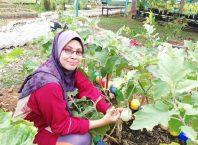 Agen-Tasneem-Naturel-Puncak-Alam-Selangor